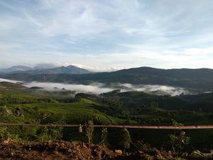 Munnar mornings! @tripoto