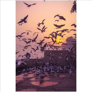 Yamuna Ghat Delhi, sunrise