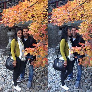 An Autumn in Japan