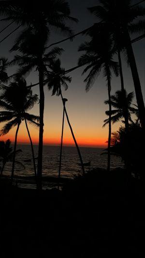 #goa#beaches#traveldairies #incredibleindia #beachtravel #seashore #anjunabeach #northgoa #goashacks