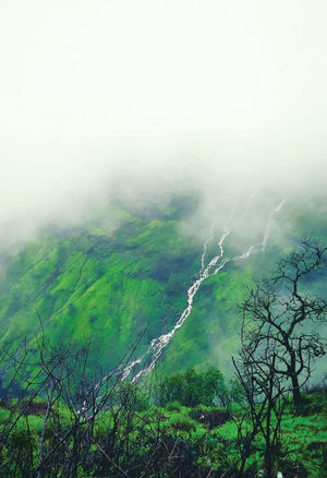Every thing is beautiful in nature! @jetairways @tripotocommunity #BestTravelPictures #Matheran