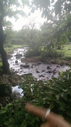 Monsoon trekking to Lohagad & Kune Falls- Clouds, mountains & raindrops