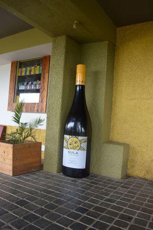 Trip to winery :sula wineyard