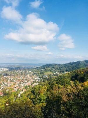Freiburg im Breisgau 1/undefined by Tripoto
