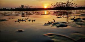 Amazing view of sunset near the lake.