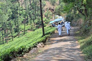 Backpacking Kerala: Beyond the backwaters