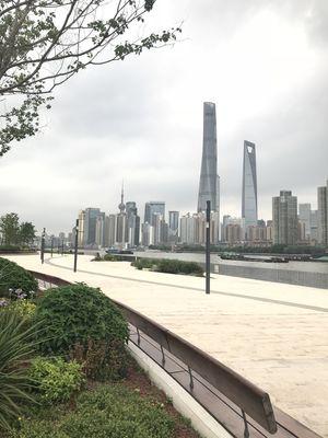 #tripotocommunity #shanghai