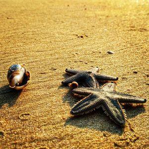 The charm of coastal beaches! #tenphotos