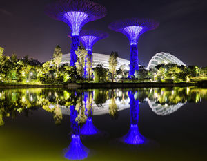 Night time reflections in Gardens by the Bay, Singapore. #BestTravelPictures