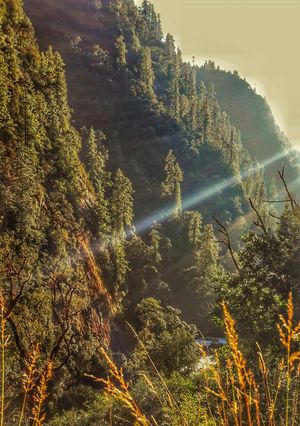 From Tawang, the Journey to the off roader's paradise ! #northeastphotos