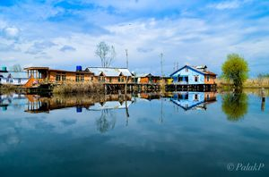 Pristine waters of the Dal Lake.