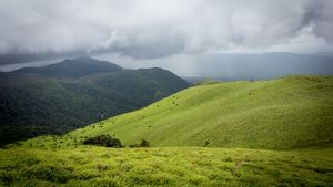"""""""Two Shades of Green"""" with cotton clouds & drizzling rain... Eye-catching & Magical Peaks :-)"""