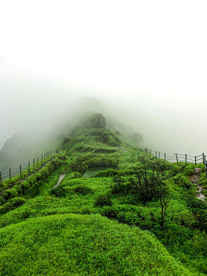 Scorpion Trail of Lohagad fort,pune lohagad fort part 2 #travelblog