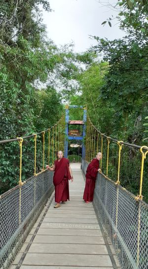walking on the hanging bridge towards island formed by river carvery-Cauvery. #tripotocommunity