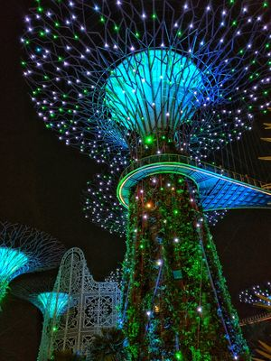 Beautiful Trees at Gardens by the bay. Do visit if you are in Singapore. Loved it!