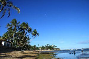 Praia do Forte - Bahia 1/undefined by Tripoto