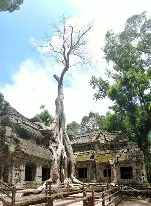 Cambodia : Beyond Angkor Wat!