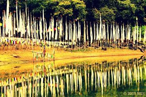 In pursuit of Peace - Yuksom, West Sikkim