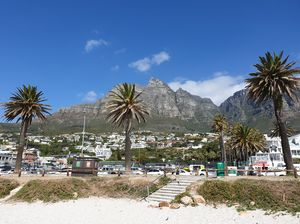 Cape Town - A city of Beaches,  Road Trips, Nature, Wild Life, Adventure & Much More