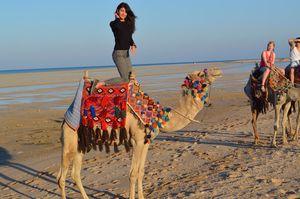 I Left My <3 In Egypt