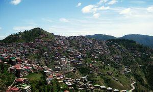 5 Reasons Why Sanjauli is the Milan of Shimla
