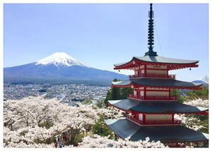 Nothing is as beautiful as Japan during the cherry blossoms season. Period. #BestTravelPictures
