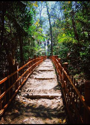Stairways to serenity. #BestTravelPicture