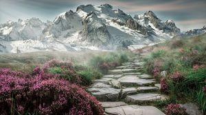 फूलों की घाटी का सौंदर्य, इसे नहीं देखा तो कुछ नहीं देखा।