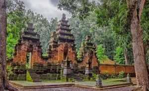 The Haunted Forest Of Spirits and sages- Alas Purwo, Indonesia
