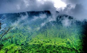 When I Found A Green Dream in Himachal