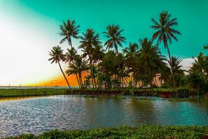 A long weekend in Kerala - God's own country !!#southindiaitinerary