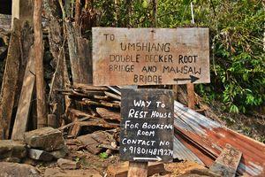 Jingmaham Living Root Bridge 1/undefined by Tripoto