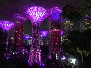 Singapore - Gardens by the Bay - Singapor
