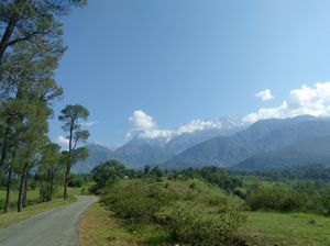 Palampur, My Home Town