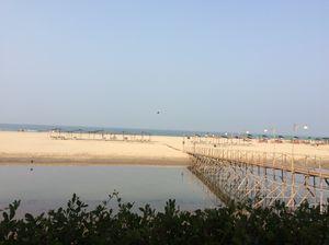 Tranquil Goa!