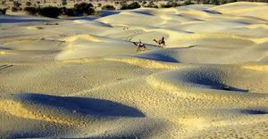 Footsteps in the golden city - Jaisalmer