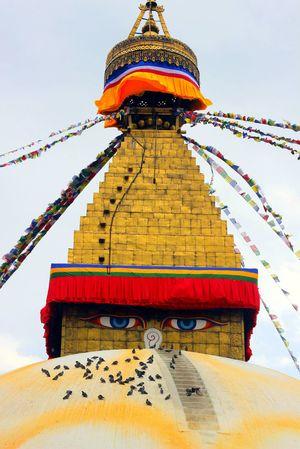 Nepal Diaries