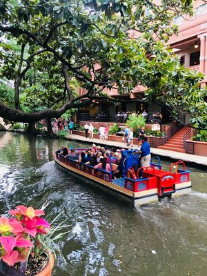 Travel Diary: Exploring San Antonio Beyond The Guidebook!