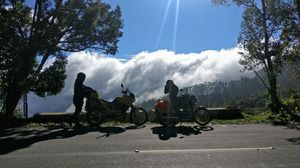 Cruising In the Clouds! 8 Days in the Western and Eastern Ghats - Ooty - Kodaikanal - Yercaud