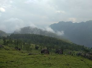 Hill station in Trivandrum _ ponmudy