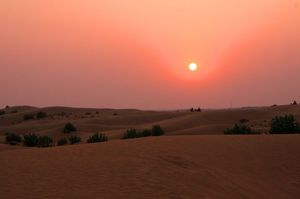 Trip to Jaisalmer and the Thar Desert 7 Day Itinerary : Day 4-7