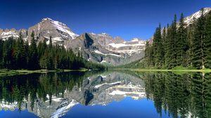 Journey through Glacier National Park 6 Days Itinerary : Days 4-6