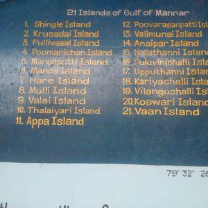 Gulf of Mannar- Museum
