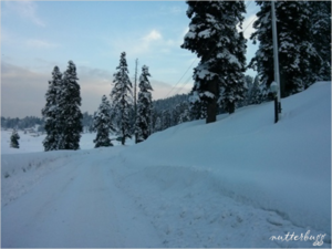 Heaven on earth – Skiing in Gulmarg, Kashmir