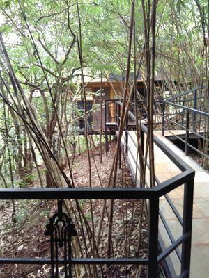 Treehouse Getaway Out of Mumbai: A Hop, Skip & Jump Away!