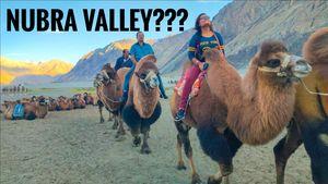 NUBRA Valley to Pangong Lake | Top things to do in Nubra Valley Tour | Leh Ladakh Trip - ep. 02