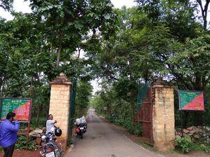 A Day In Chandauli