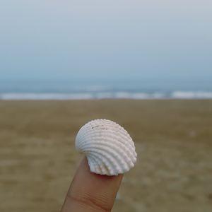 Puri - Beach & Food