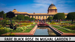 THE DAY I VISITED MUGHAL GARDEN
