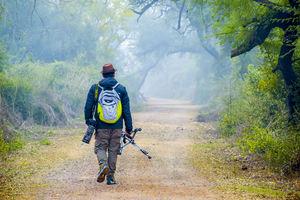 Photo tour: A Day trip to Bharatpur Bird Sanctuary